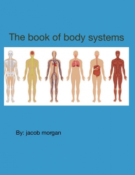 Book of body systems