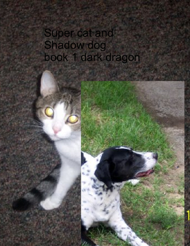 Super cat and shadow dog