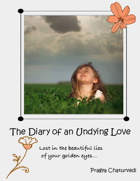 The Diary Of An Undying Love