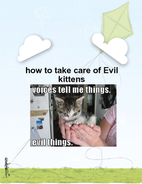 how to take care of evil kitties