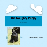 The Naughty Puppy (Two Points of View)