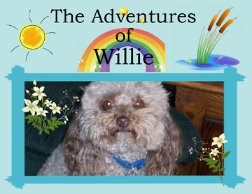 The Adventures of Willie