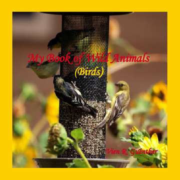 My Book of Wild Animals - BIRDS