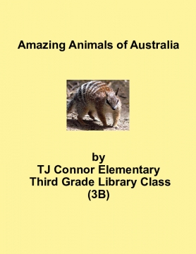 Amazing Animals of Australia