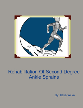 Rehabilitation For A Second Degree Ankle Sprain