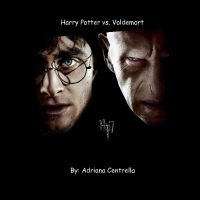 Harry Potter vs. Lord Voldemort