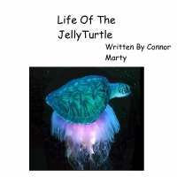 life of the jellyturtle