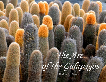 The Art of The Galapagos
