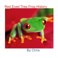 Red Eyed Tree Frog History