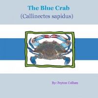 The Blue Crab