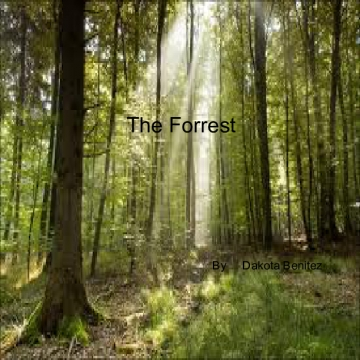 the forrest