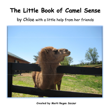 The Little Book of Camel Sense