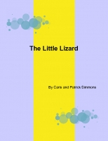 The Little Lizard