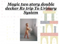 Magic Two Story Double Decker Rv Through The Urinary System