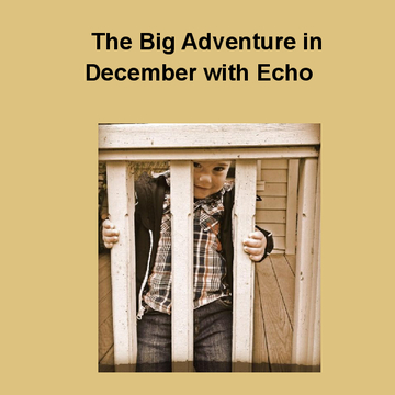 The Big Adventure in December with Echo