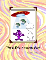 Tim and Eric: Awesome Book