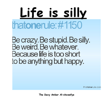 Life is silly