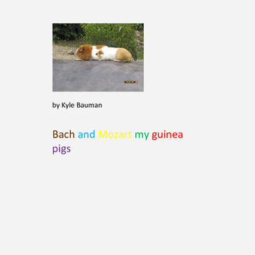 my guinea pigs bach and mozart