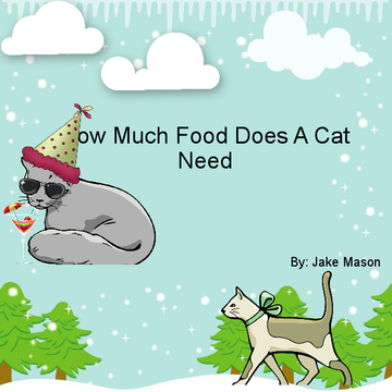 How Much Food Does A Cat Need?