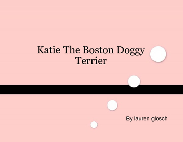 Katie The Boston Doggy Terrier
