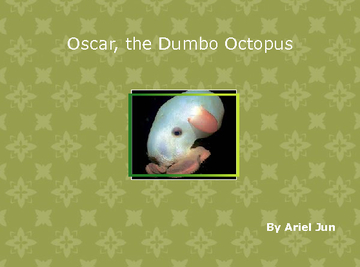Oscar, the Dumbo Octopus