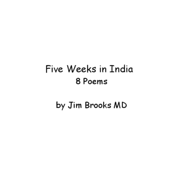 FIve Weeks in India