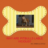 WY ARE PIT BULLS LABLE VICIOUS?