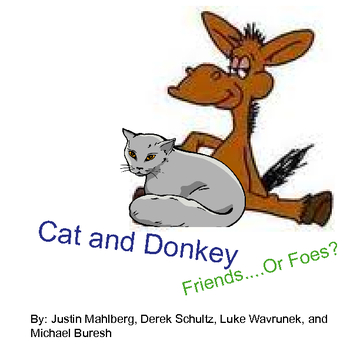 Cat and Donkey