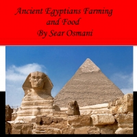 Ancient Egypt Farmin and Food