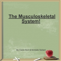 The Musculosketal System