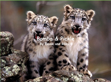 Bomba & Pickle