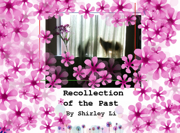 Recollection of the Past