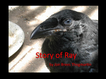 Story of Ray