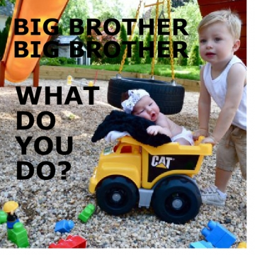 BIG BROTHER BIG BROTHER WHAT DO YOU DO?