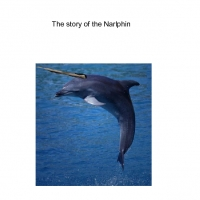 The Story of the Narlphin