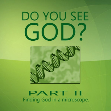 Do You See God? Part II