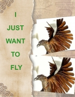 I JUST WANT TO FLY