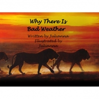 Why There Is Bad Weather