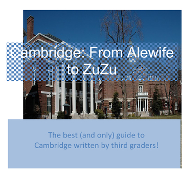 Cambridge: From Alewife to ZuZu