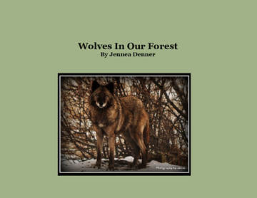 Wolves In Our Forest