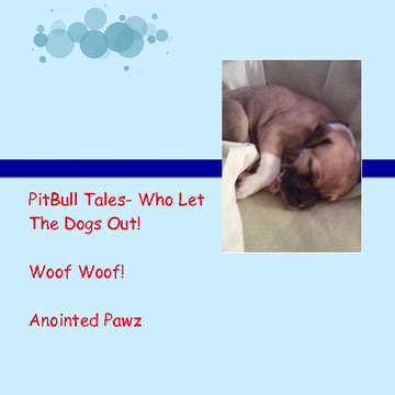 Pitbull Tales-Who Let The Dogs Out