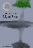 When The Moon Rises