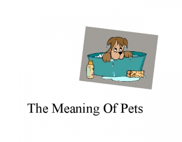 the meaning of pets
