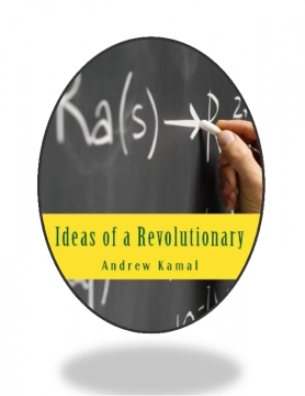 Ideas of a Revolutionary 2nd Edition