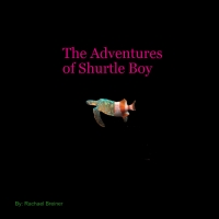 The adventures of Shurtle boy