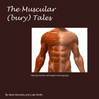 The Muscles of the Body