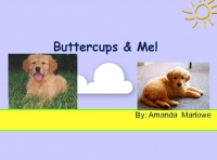 buttercups And me!