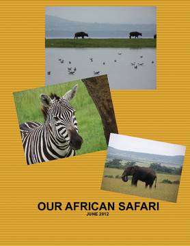 OUR AFRICAN SAFARI