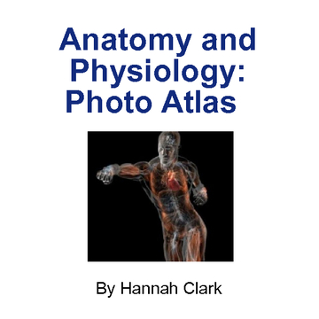 Anatomy and Physiology Photo Altlas