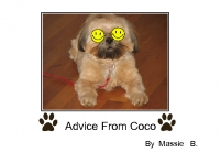 Advice from Coco
